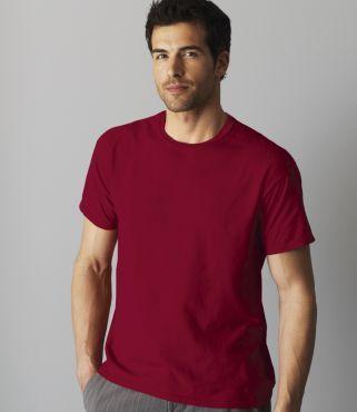 GD01 Gildan T-Shirt