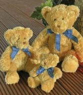 MM01 Mumbles Bracken Bear